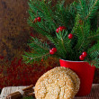 Christmas cookies on the table with Christmas decorations — Stock Photo #36549399