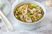 Barley soup with mushrooms — Foto de Stock