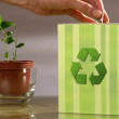 Stock Video: Vote for recycle.