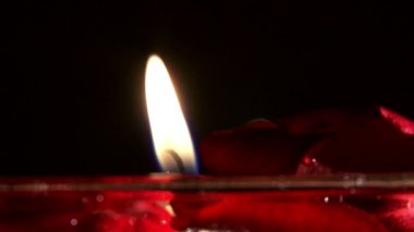 Candles and flower petals — Stok video