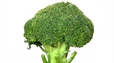 Brokoli, döndürme, sıra — Stok video