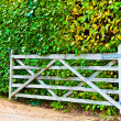 Cottage Gateway with background of a hedge — Stock Photo