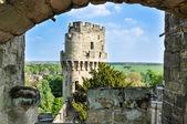 вид башня уорикский замок — Стоковое фото