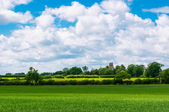 Rural landscape of Suffolk, Bury St Edmunds, England, UK — Stock Photo