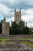 Abbey gardens, Bury St Edmunds, Suffolk, UK — Stock Photo