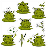 Green frogs set — Stock Vector