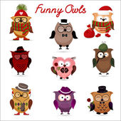 Funny owls. set for your design. — Stock Vector