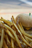 French Fries and a Cheeseburger — Stock Photo
