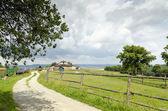 Countryside landscape — Stock Photo