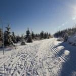 Beautiful winter day — Stock Photo #18117639