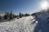 Mooie winterdag — Stockfoto