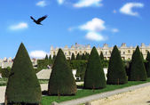 Versailles garden — Stock Photo