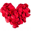 Stock Photo: Heart from petals