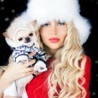 Stock Photo: Beautiful blonde womwith small dog