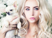 Glamour girl with chihuahua — Stockfoto