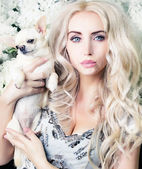 Glamour girl with chihuahua — Stock Photo