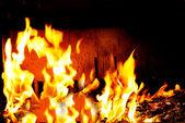 Bright fire — Stock Photo
