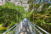 Мост из The Vale Tempe в Северной Греции — Стоковое фото