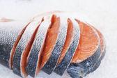 Fresh salmon — Stock Photo