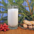 Milk and gingerbread for Santa, close-up — Foto de stock #15058225
