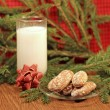 Milk and gingerbread for Santa, close-up — Lizenzfreies Foto
