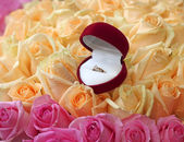Gift box with gold ring on beautiful roses background, close-up — Stock Photo