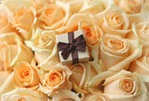 Gift box on beautiful roses background — Stock Photo