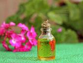 Geranium olej ve skleněné lahvi — Stock fotografie