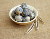Quail eggs in brown bowl with feathers — Stock Photo