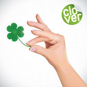 Hand Holding Clover Illustration — Stock Vector