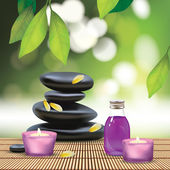 Spa Composition With Zen Stones — Stock Vector