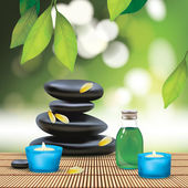 Spa Composition With Zen Stones — Stockvektor