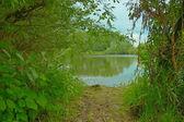 Een pad naar de rivieroever — Stockfoto