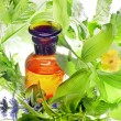 Bottle with homeopathy balm and wood plants — Stock Photo #12814685