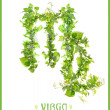 Virgo symbol — Stock Photo