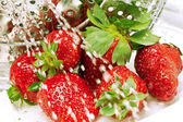 Strawberry and a drops of water — Stock Photo