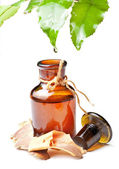 Bottle with homeopathy balm and leaf — Stock Photo