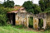 Abandoned house — Стоковое фото