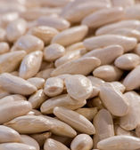Typical Asturian beans — Stock Photo