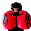 Foto Stock: Boxer woman