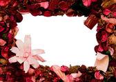 Framework of petals — Stock Photo