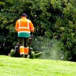 Man mowing - Stock Photo