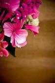 Bouquet — Foto de Stock