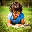 Little girl reading — Stok fotoğraf