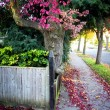 Autumn street — Stock Photo