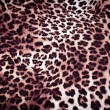 Leopard texture — Stock Photo #38396667
