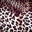 Leopard texture — Stock Photo #38396671