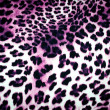 Leopard texture — Stock Photo #38396731