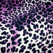 Leopard texture — Stock Photo