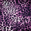 Leopard texture — Stock Photo #38396771